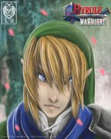Hyrule Warriors Link by LycanthropeHeart