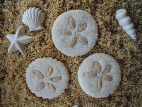 Sand dollar cookies by cake4thought