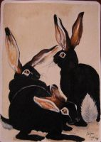 ACEO Rabbits in black by sanguigna