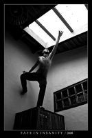 Fate in Insanity by 1j3an8 by Costarricenses