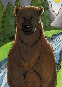 Grizzly Bear ATC by bruisedhound