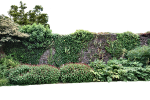 Walled Garden PNG. by AledJonesStockNArt