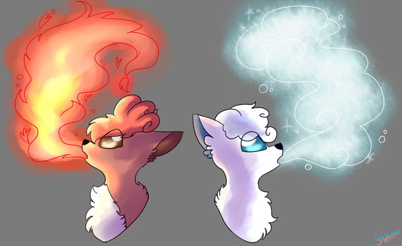 Fire and Ice by nikobaka
