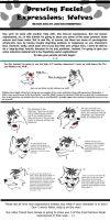 Help with: Wolf facial expressions by AsharaNi