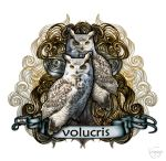 Volucris by CassiopeiaArt