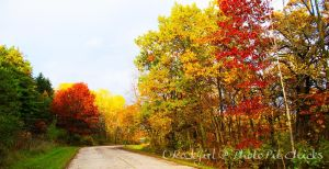Autumn in Wisconsin by ORockGirl