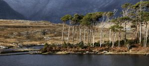 Connemara 6 by lornamacdonald