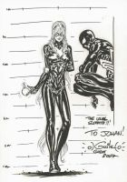 Spidey and Black Cat teasing by SpiderGuile
