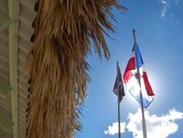 III. Dominican Republic Flag by hummuss