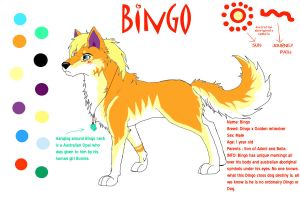 Bingo Character sheet by HAYLO143