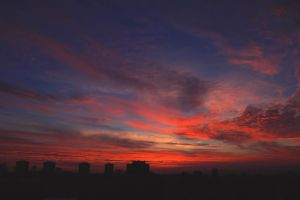 She painted fire across the skyline by dandelion-of-freedom