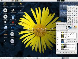 GNOME2 just my random desktop by biggyp