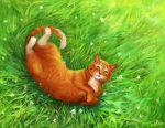 sunny cat by eleth89