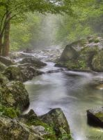 Smoky Mountain Mists by Recalibration