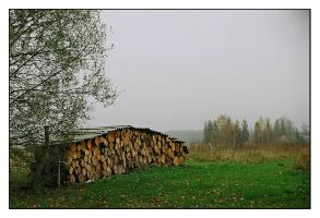 Country Fog by rATRIJS