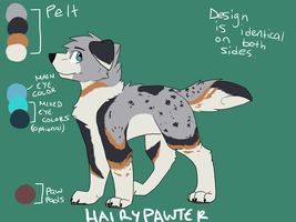 Custom adopt: HairyPawter by Fluff-butts