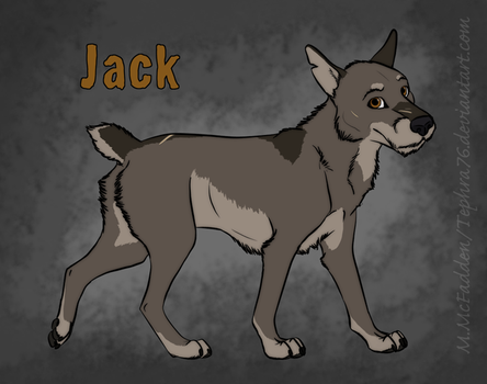 Feral Dog Character- Jack by Tephra76