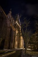 St.-Marien-Kirche by antarialus