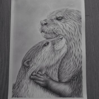 Otters by CarbonData by CarbonData