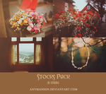 Stocks Pack by AnyManson