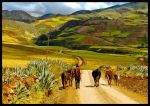 Peru's Farmer by Korialtaz
