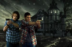 SPN  *Sam and Dean* by LiFaAn