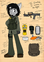 Vanessa: S.T.A.L.K.E.R. kitty by Sandwich-Anomaly