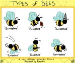 Types of Bees by Razska