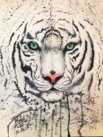 Eye Of The Tiger by RoysRoys