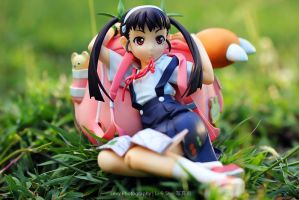 Mayoi, the girl puzzled by a snail.. by lexy04