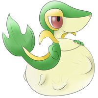Snivy Belly Buldge! :P by ZackTheRiolu