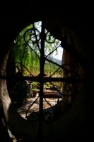Behind the window's bar by Quentin-Kalend