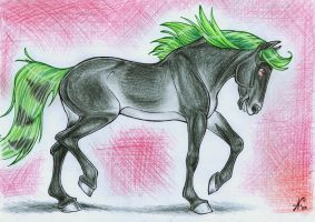 Andalusian mare by branka42