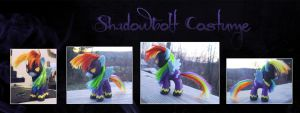 My Little Pony Shadowbolt Rainbow Dash Custom 2 by kaizerin