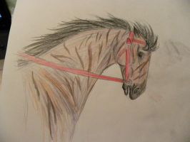'12 Arkansas Derby-Fight CLub by patchesofheaven74