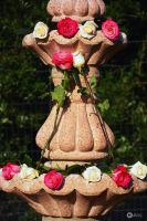 Roses and fountain by Philatx