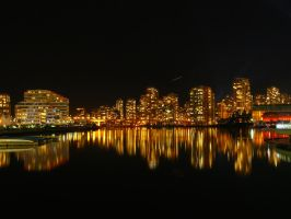 Vancouver at night by paolica