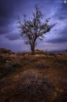 angry storm by sultan-alghamdi