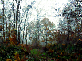 Woodland View by Nigel-Hirst