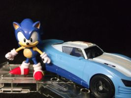 Sonic The Hedgehogs fastest opponent yet! by forever-at-peace