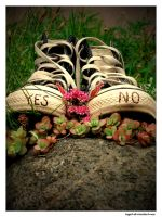 yes or no ? by ingut