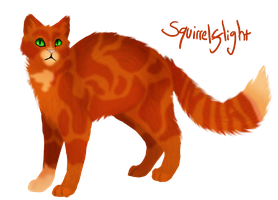 Squirrelflight by Shakshun