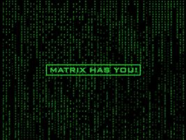 Matrix Has You by DKS-Eve