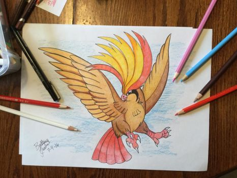 Traditional Pidgeot by Unibat