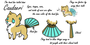 OUTDATED REF Caudaeri -New CLOSED Species- by SherIockHoImes