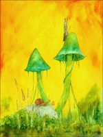 The mushrooms big and small by Komar4