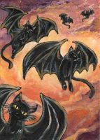 Flying Black Cats by sobeyondthis