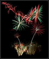 Flowers Pyrotechnics by FaustoOo
