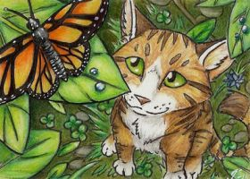 wish i had wings ACEO by rohirrimshadow
