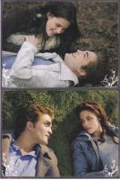 Edward and Bella at the Meadow by csoccerchic101